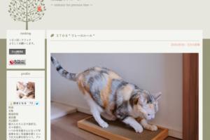 愛猫とのマンションライフ。その秘訣を教えてくれるブログ!